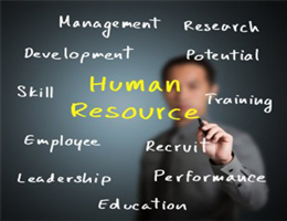 Human Resource Mgmt. Consulting